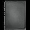Napoleon Gusseisen Wendeplatte Rogue®425 525 SE glatte Grillplatte